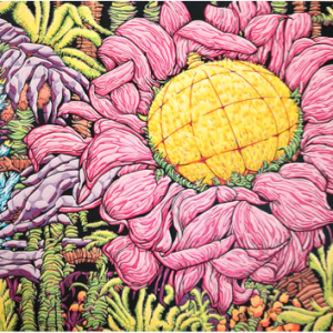 Exotic Sunflower