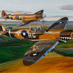 Spitfires 100 x 81