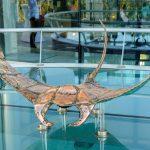 Mondo - ArtCatto Gallery in Loulé Algarve